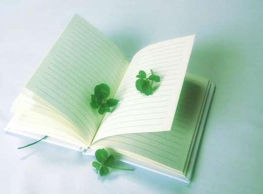 diaryplay-img01